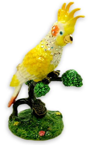 попугай шкатулка