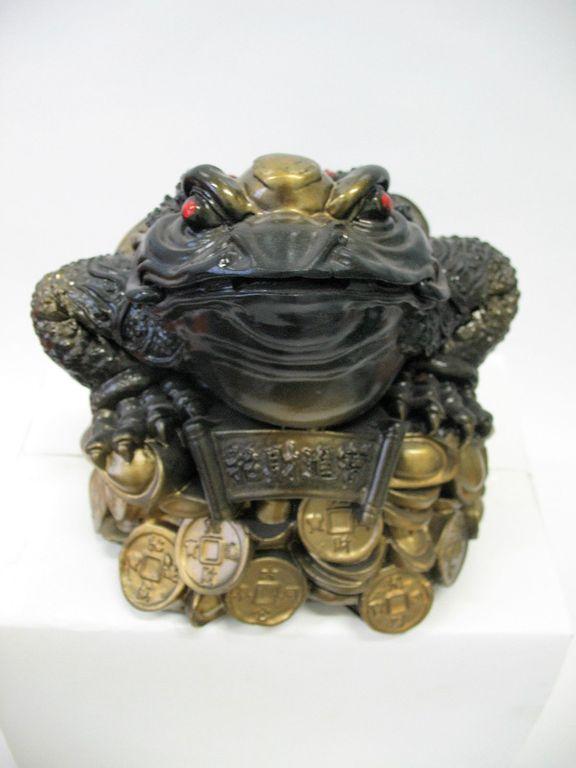 копилка жаба на деньгах